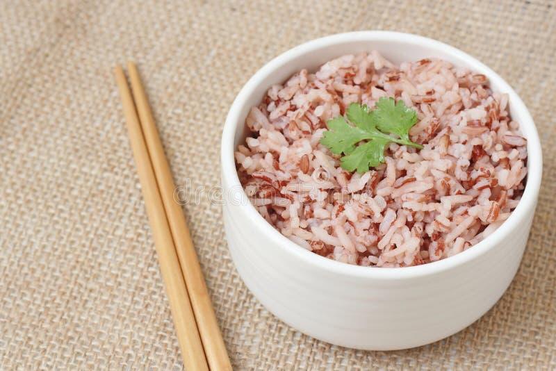 在碗的糙米 库存图片