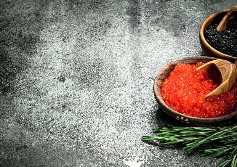 在碗的红色和黑鱼子酱用迷迭香分支 库存照片