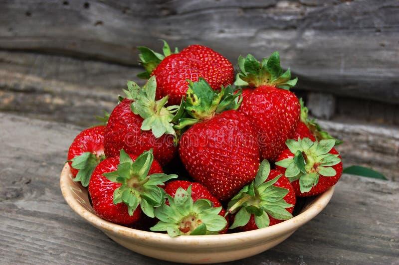 在碗的草莓红色 图库摄影