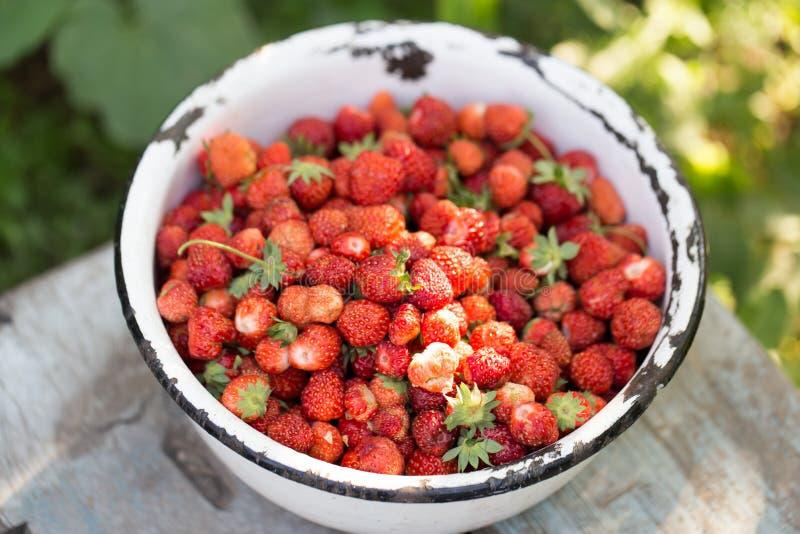 在碗的草莓 免版税库存图片
