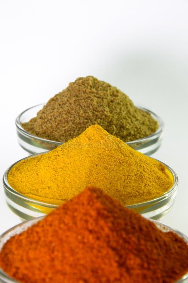 在碗的辣椒粉、姜黄粉末&香菜粉末 免版税库存图片