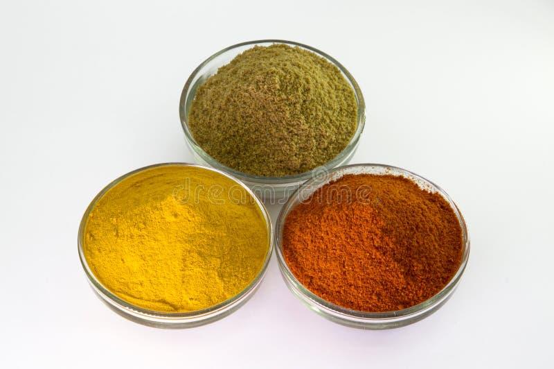 在碗的辣椒粉、姜黄粉末&香菜粉末 免版税库存照片