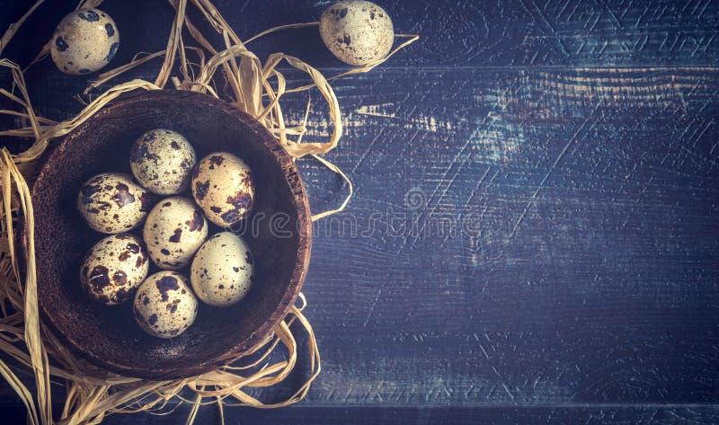 在碗的鹌鹑蛋 库存图片
