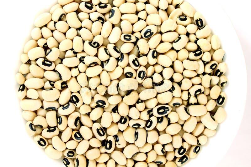在碗的黑眼睛豆在白色背景 免版税库存照片