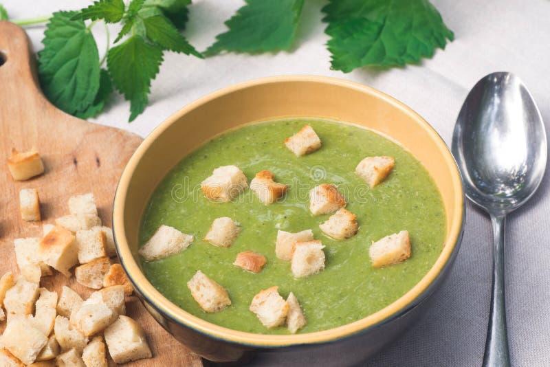 在碗的绿色荨麻汤 库存图片