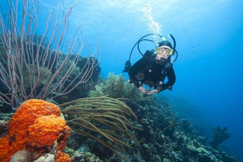 在礁石水肺游泳的珊瑚潜水员 免版税库存图片