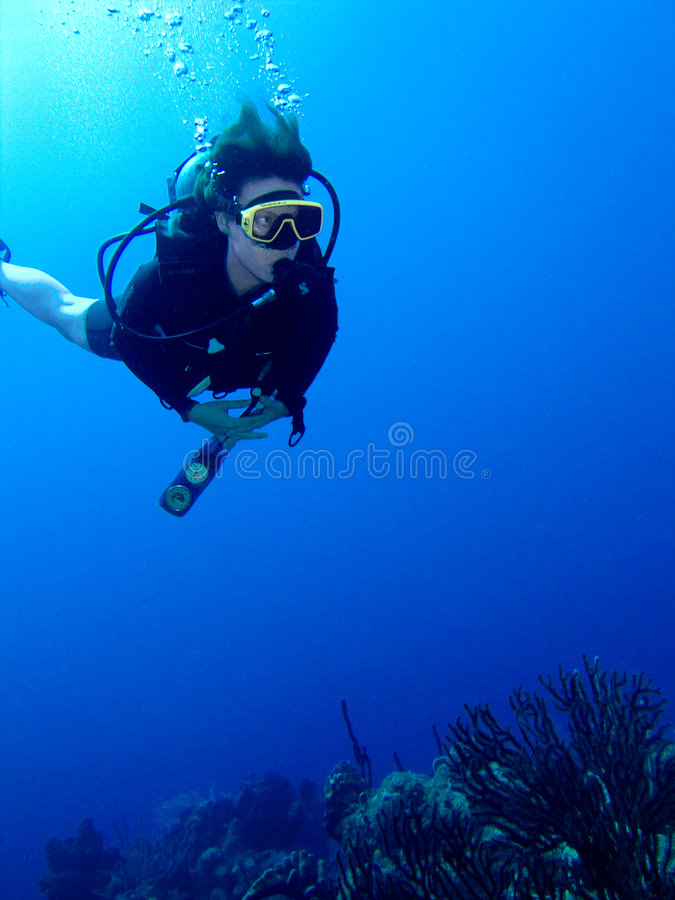 在礁石的潜水员 库存图片