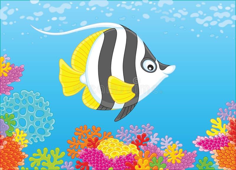 在礁石的蝴蝶鱼 库存例证