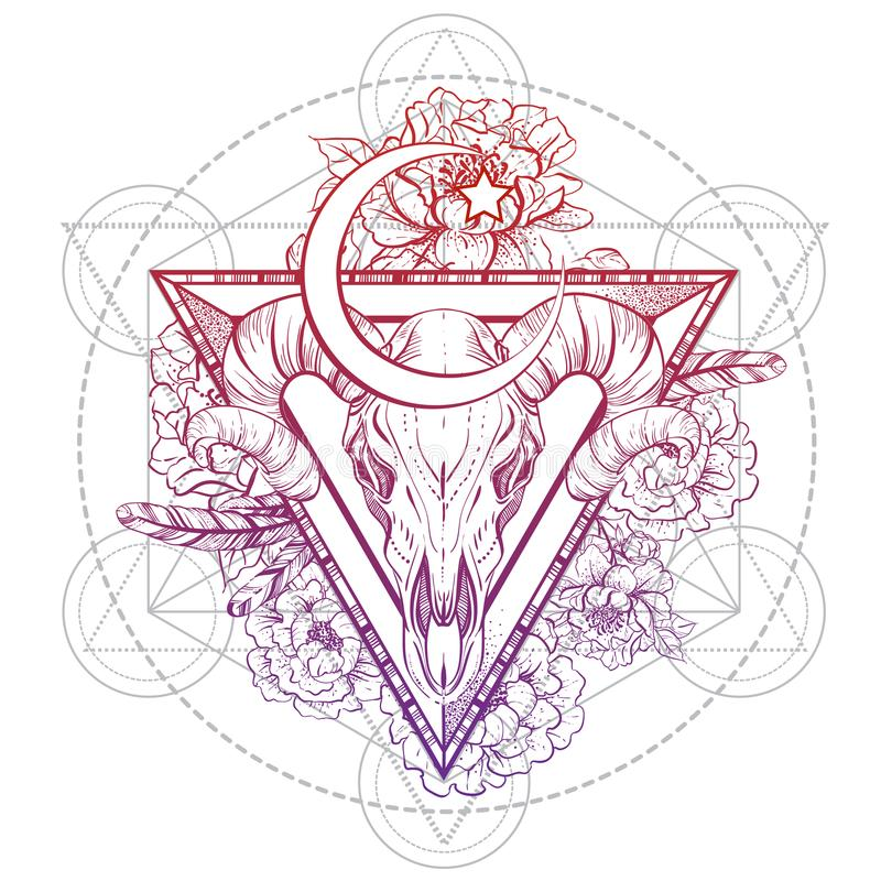 在神圣的三角的美丽的手拉的部族样式公牛头骨与牡丹开花;时髦葡萄酒样式传染媒介例证 皇族释放例证