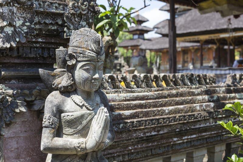 在神圣的猴子森林, Ubud,巴厘岛,印度尼西亚的猴子 库存图片