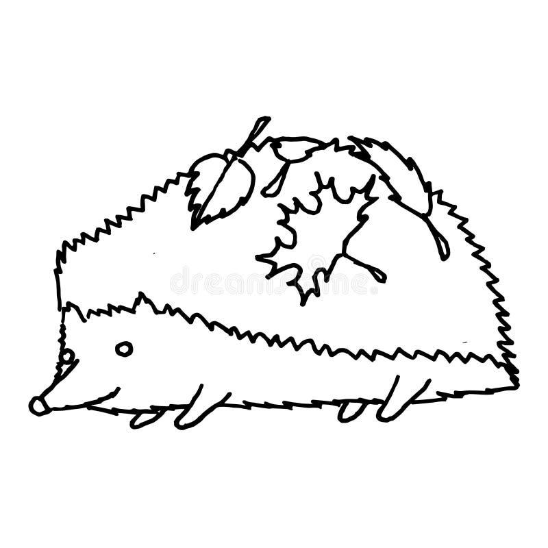 在秋叶的猬 单色剪影,手图画 在白色背景的黑概述 r 库存例证
