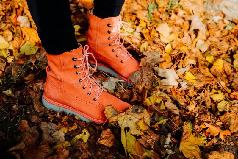 在秋叶的红色鞋子 免版税库存图片