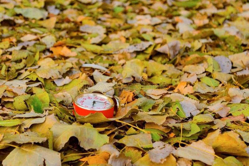 在秋叶的老时钟在公园 容易秋天的背景编辑图象本质导航 库存照片