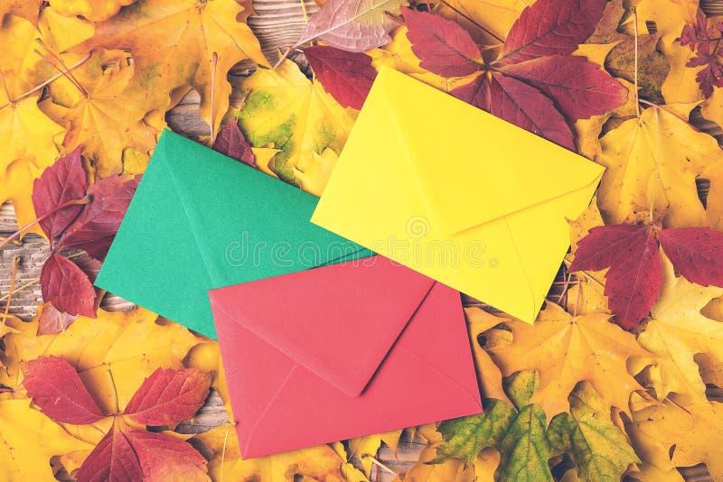 在秋叶背景的色的信封 秋天假日概念 在秋天时间的信件 秋季浪漫时间 库存图片