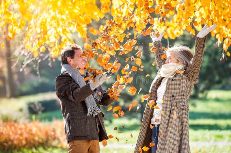 在秋天公园投掷的叶子的活跃资深夫妇 免版税图库摄影