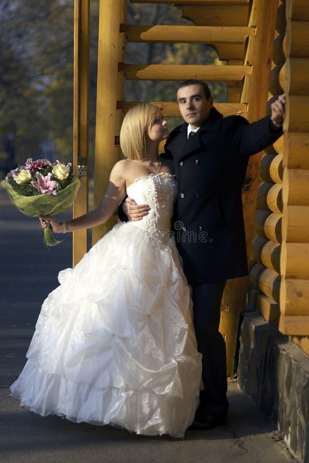 在秋天公园的婚礼夫妇 在Th的美好的已婚夫妇 库存照片