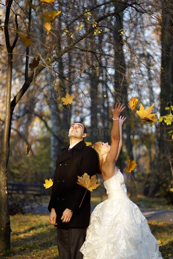在秋天公园的婚礼夫妇 已婚夫妇在婚礼之日 库存图片