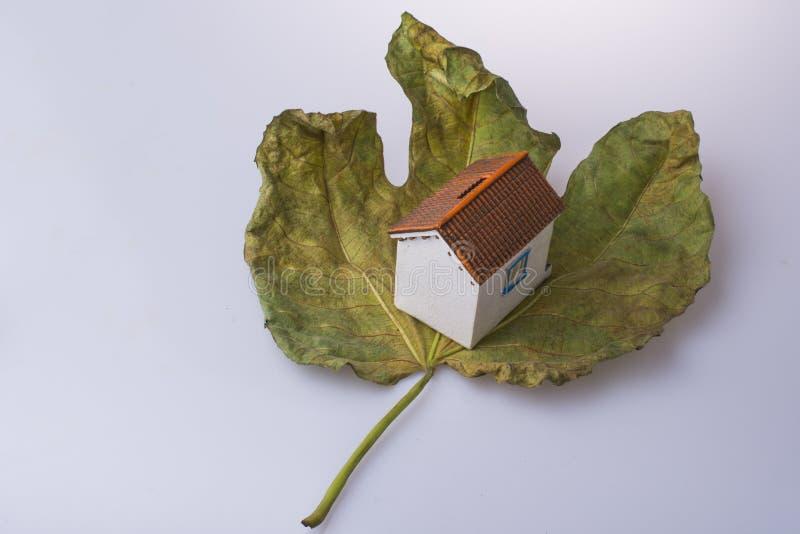 在秋天叶子安置的一点式样房子 免版税库存照片