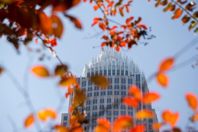 在秋天季节期间的夏洛特北卡罗来纳都市风景 图库摄影
