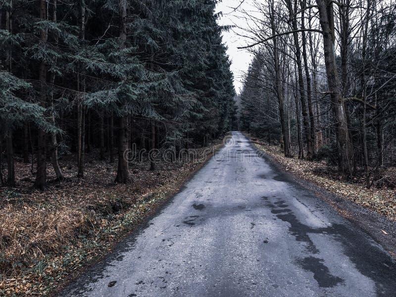 在秋天山的路 免版税库存图片