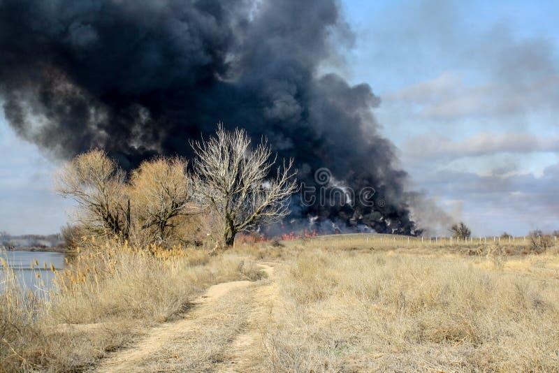 在秋天干草原的火 免版税图库摄影