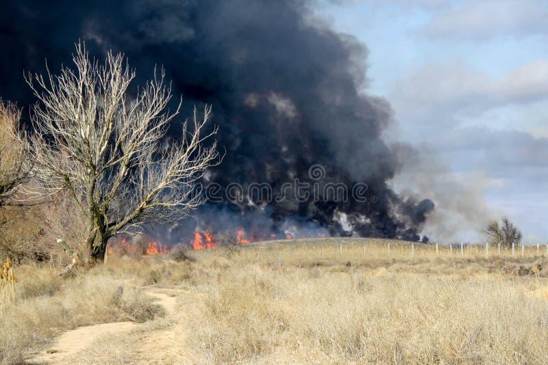 在秋天干草原的火 免版税库存图片