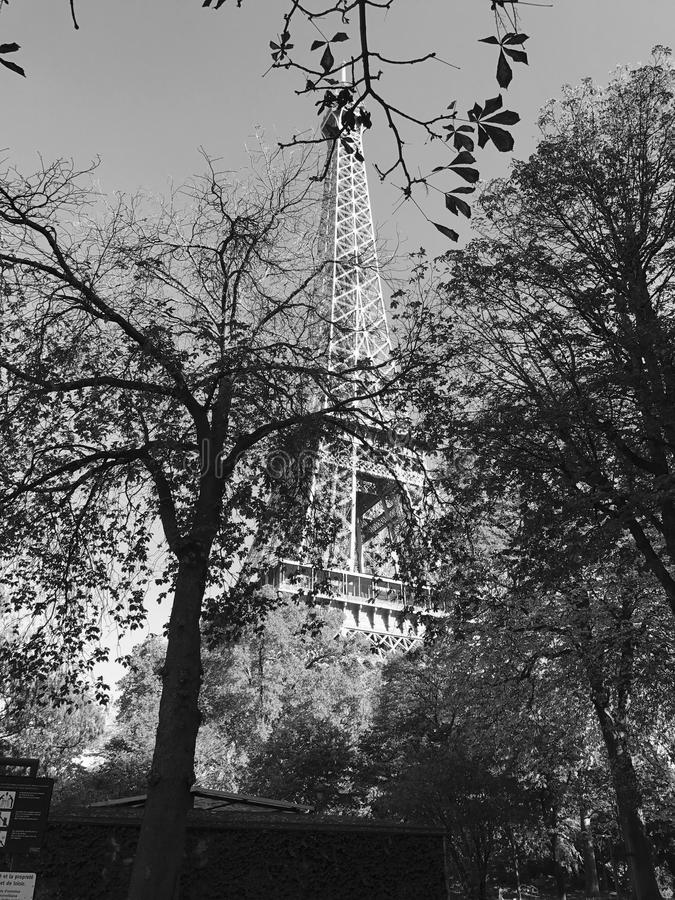 在秋天期间的艾菲尔铁塔 免版税图库摄影
