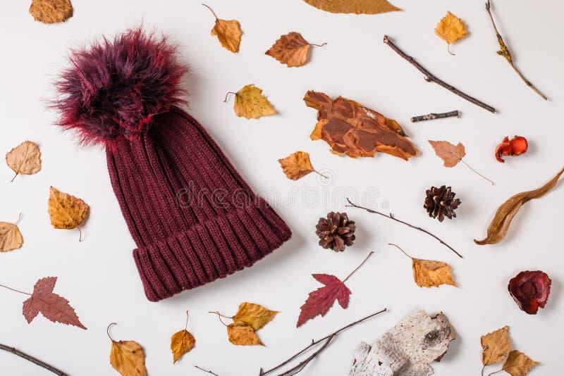 在秋天构成的温暖的盖帽 免版税库存图片