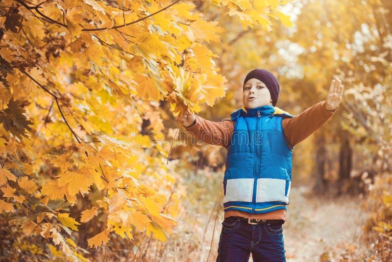 在秋天树背景的滑稽的孩子  图库摄影