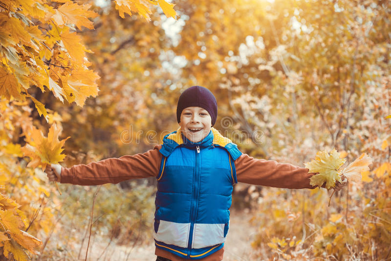 在秋天树背景的滑稽的孩子  免版税库存照片