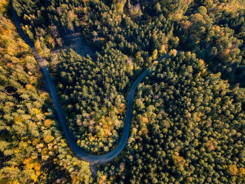 在秋天森林鸟瞰图的路 图库摄影