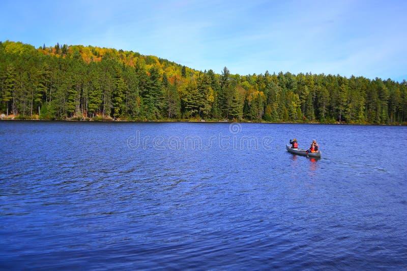 在秋天湖的独木舟租务在阿尔根金族公园 安大略,加拿大,10月 库存照片