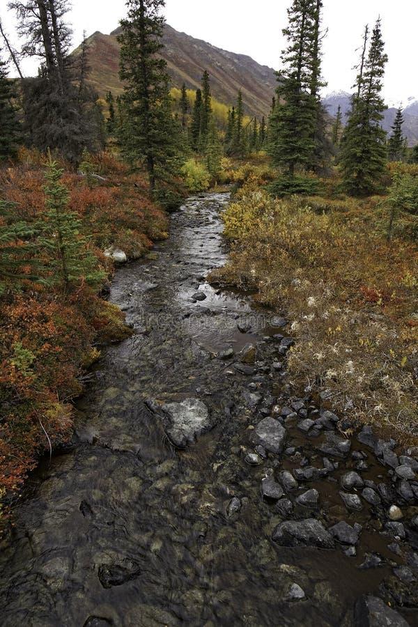 在秋天的一条阿拉斯加的小河 免版税图库摄影