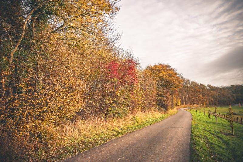 在秋天的乡下风景 库存图片