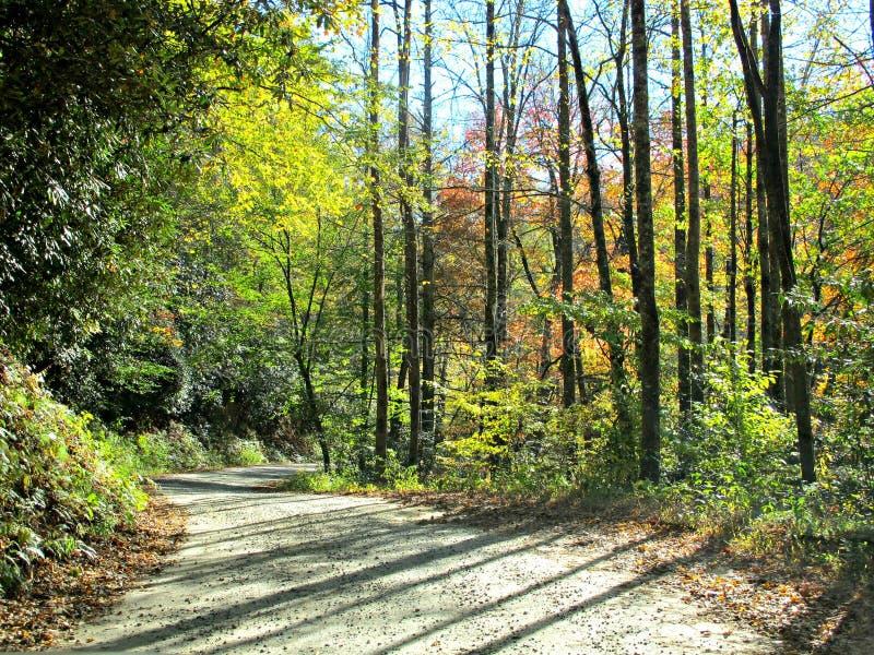 绕在秋天的山路 免版税库存图片