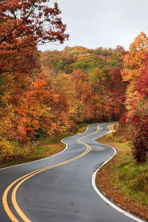 在秋天的弯曲道路 免版税库存图片