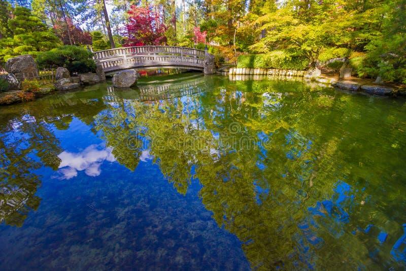 在秋天的日本庭院反映 库存图片