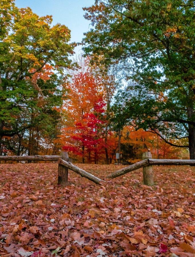 在秋天的残破的篱芭 免版税库存照片