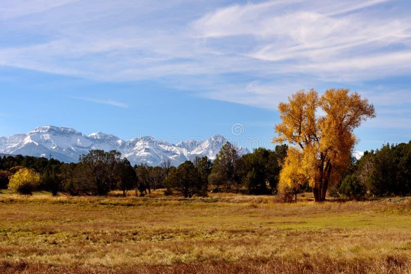 在秋天的科罗拉多山 免版税库存图片