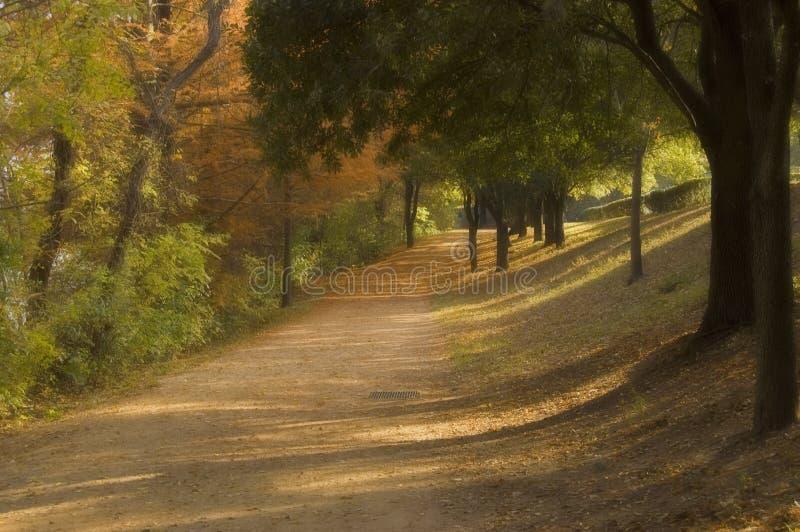 在秋天的走的足迹 库存图片
