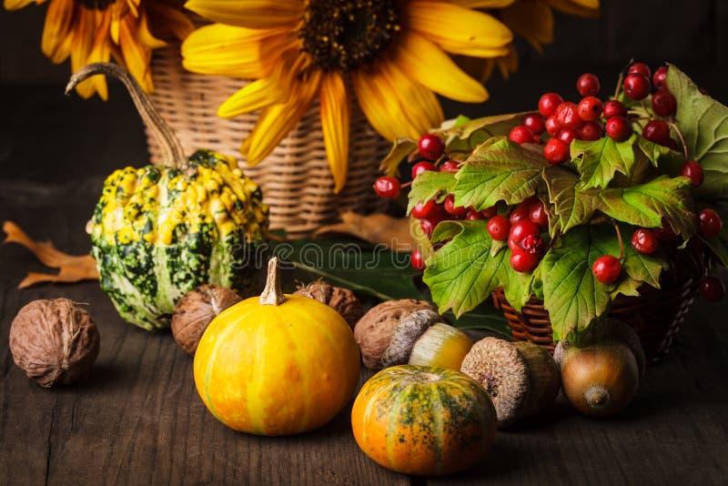 在秋天的颜色的静物画 免版税库存照片