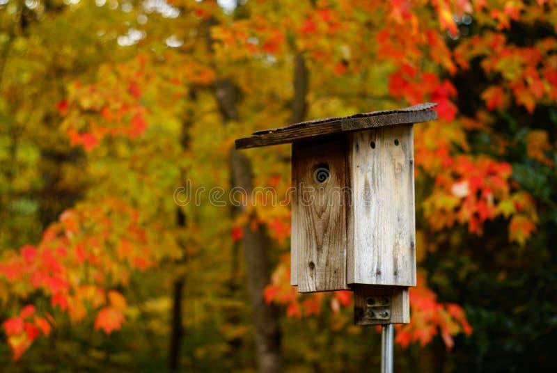 在秋天的鸟舍 免版税库存图片