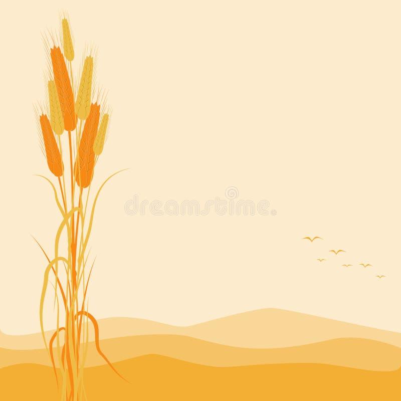 在秋天背景的金黄麦子耳朵 库存例证