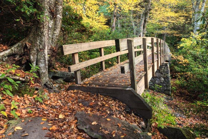 在秋天蓝色里奇大路NC的Tanawha桥梁 免版税库存照片