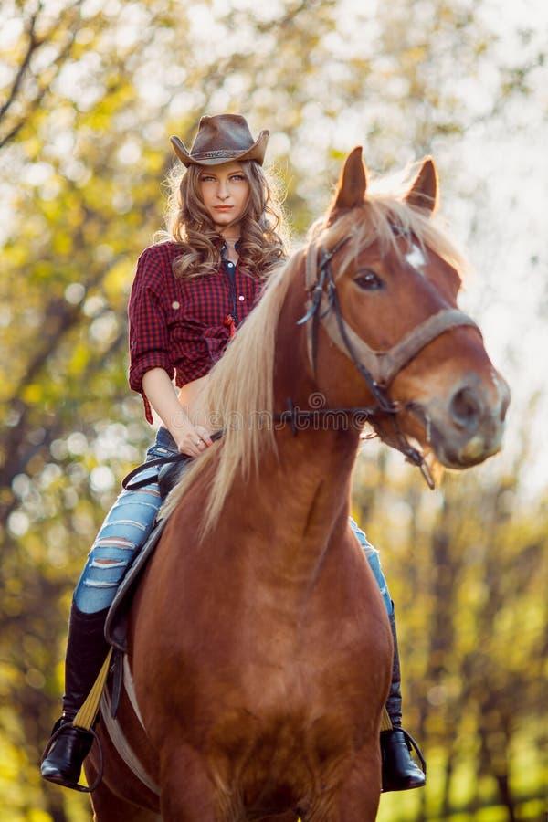 在秋天领域的美丽的女孩骑乘马 库存照片