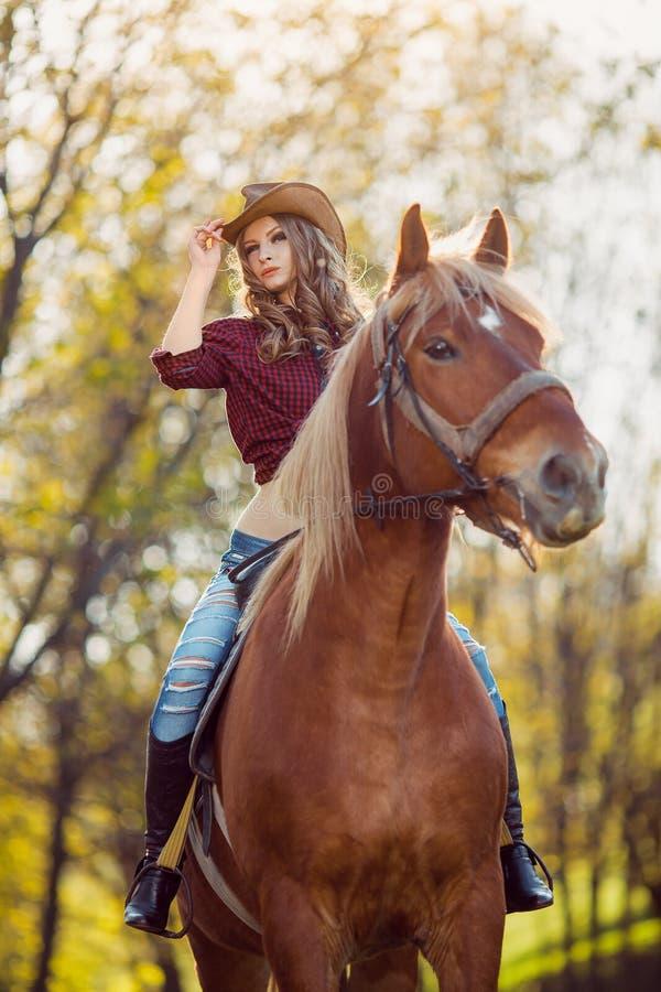 在秋天领域的美丽的女孩骑乘马 库存图片