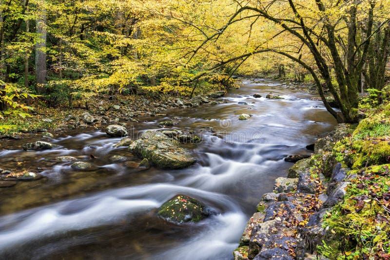 在秋天颜色的发烟性山小河 图库摄影