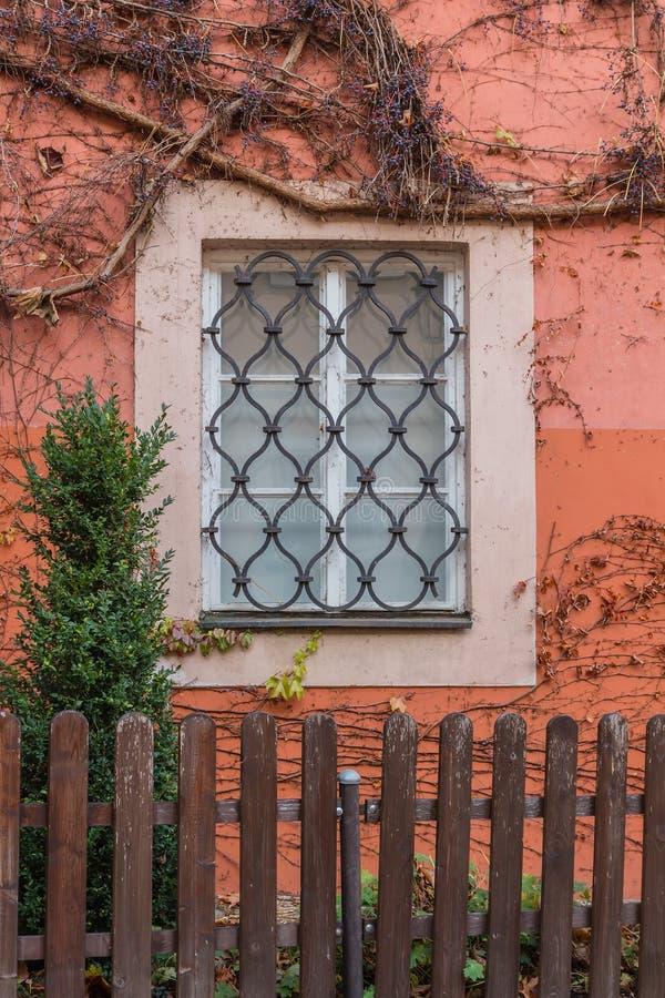 在秋天颜色的常春藤长满的窗口 库存图片