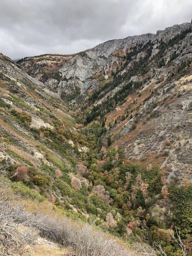 在秋天颜色的犹他峡谷 库存图片