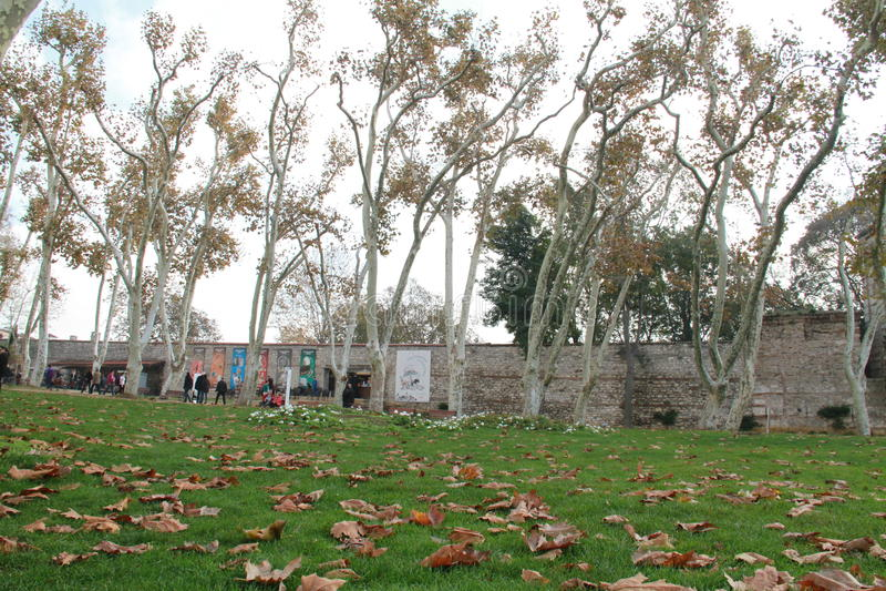 在秋天从事园艺在Topkapi宫殿,伊斯坦布尔,土耳其 库存照片